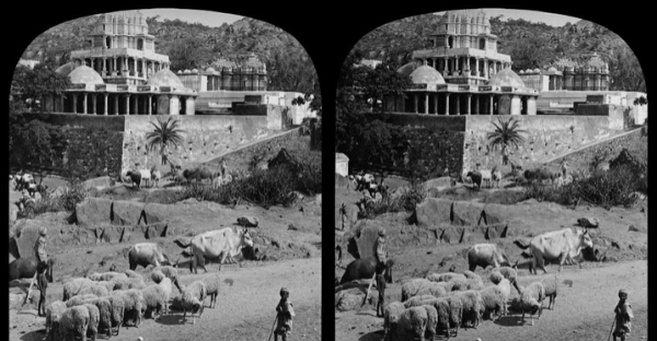 Rotman Stereograph Collection