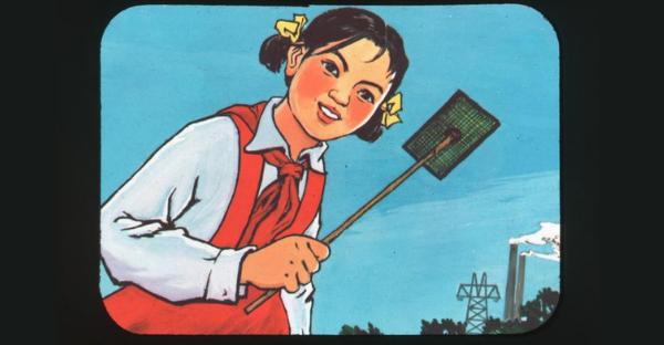 Johns Hopkins University Chinese Public Health Campaign Slides 1950-1970s